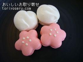 マールブランシュの四季のマカロン(桜)