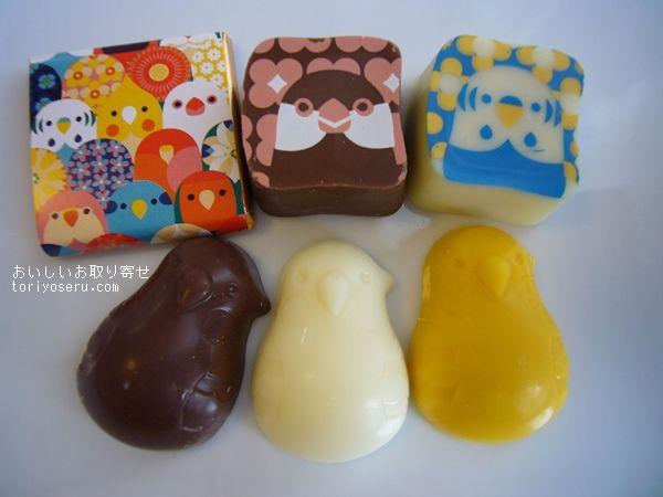 KOTORITATIチョコレート缶小鳥
