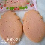 栃木県にあるお菓子の城・那須ハートランドのいちごサブレ