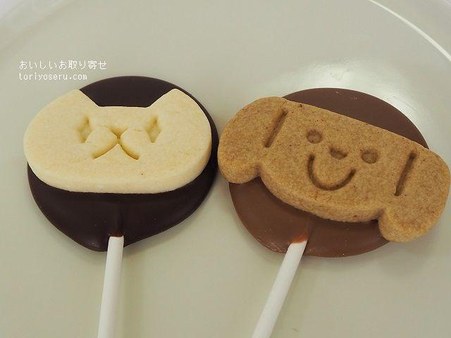 maison roni-unieの子犬と子猫のチョコレート