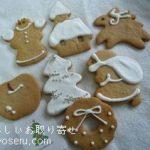 HANAのクッキークリスマス